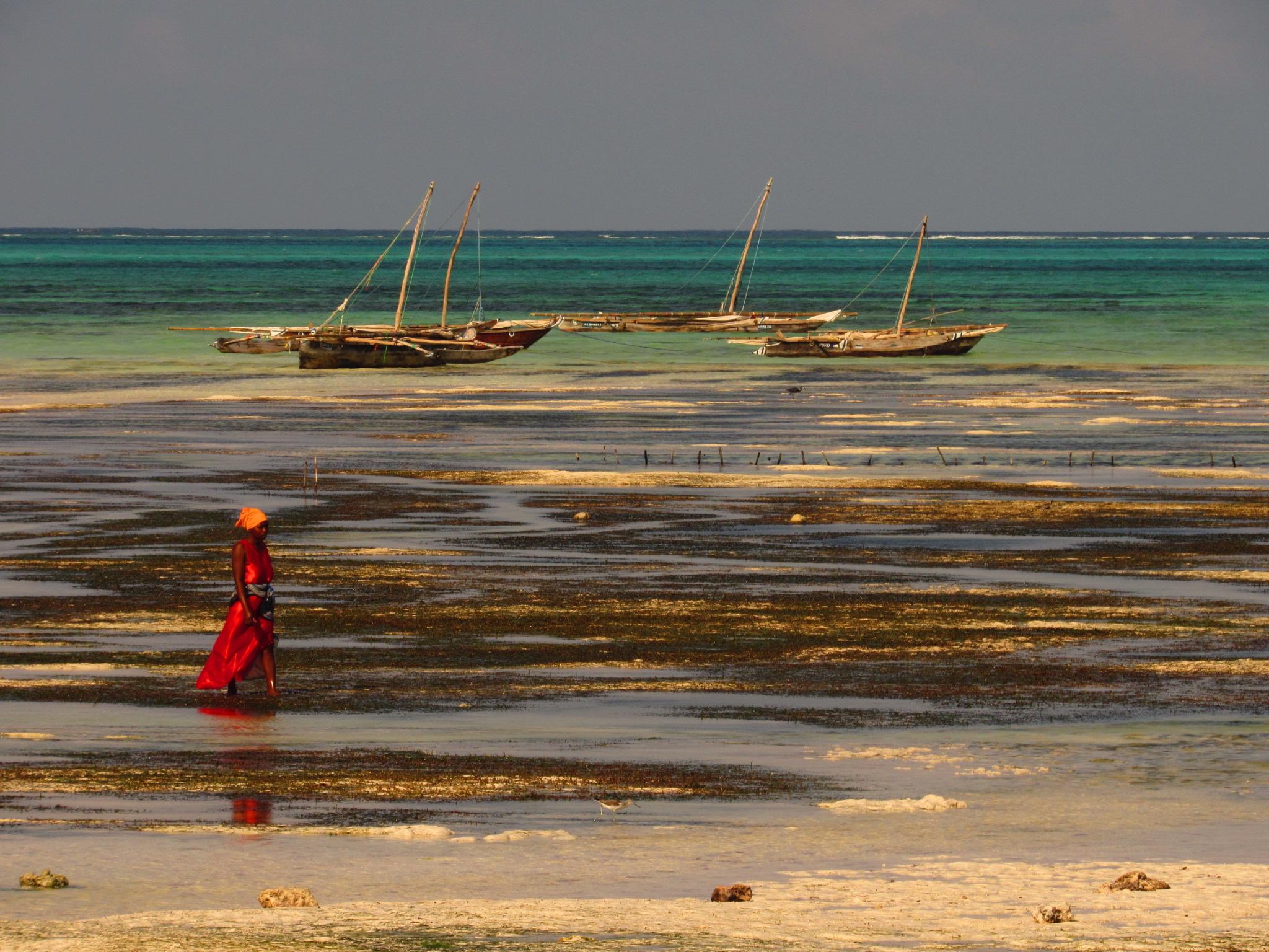 Woman on Jambiani beach, Tanzania