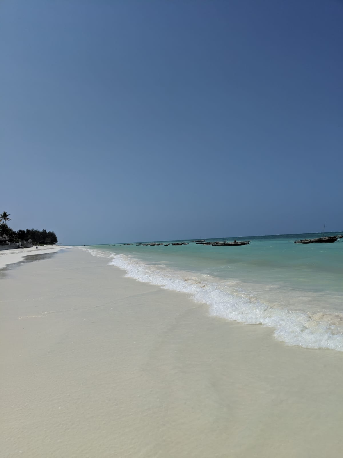 White sand and crystal clear water in Jambiani beach, Zanzibar, Tanzania