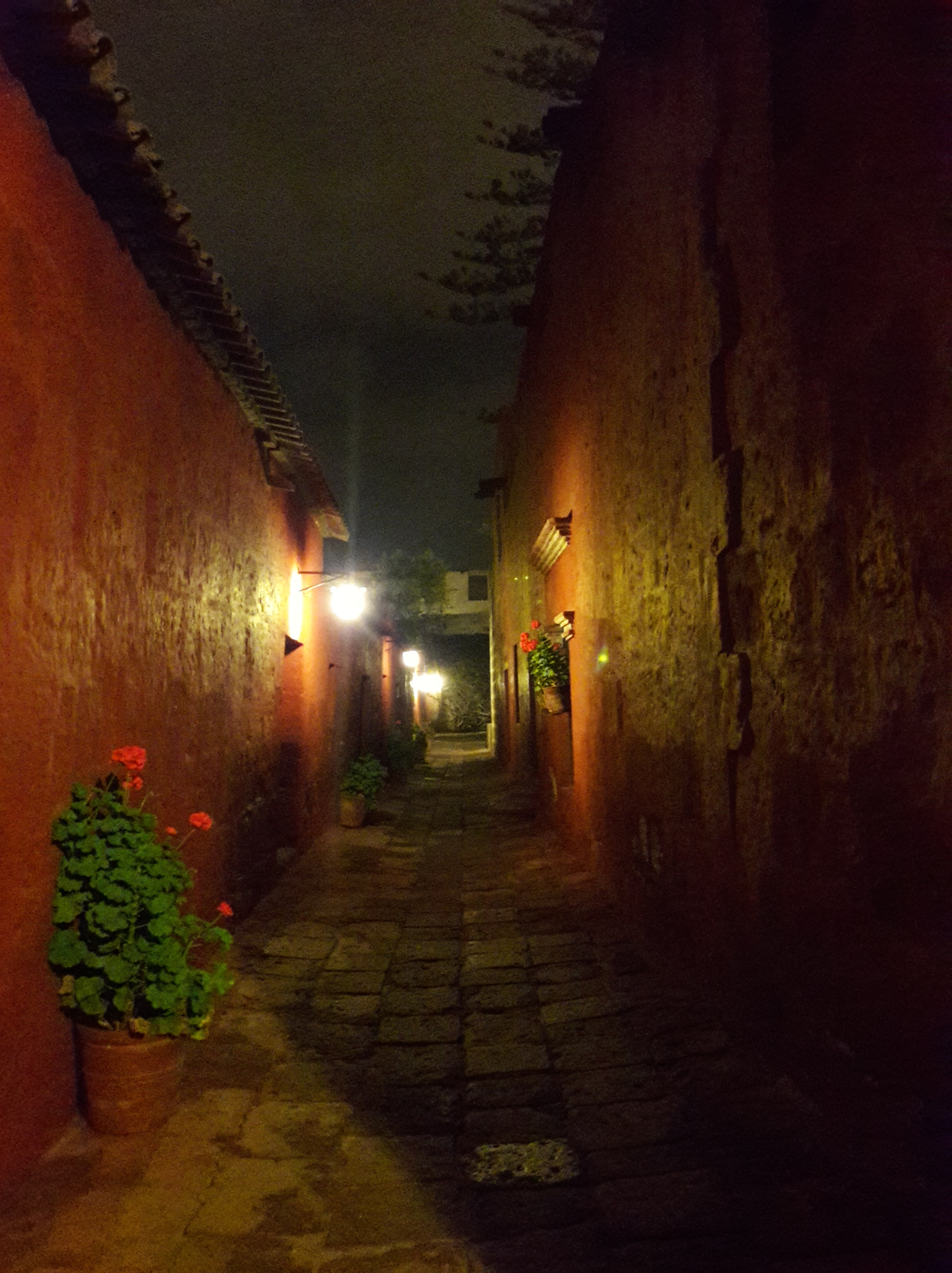 a narrow street with orange walls and flower pots with red flowers