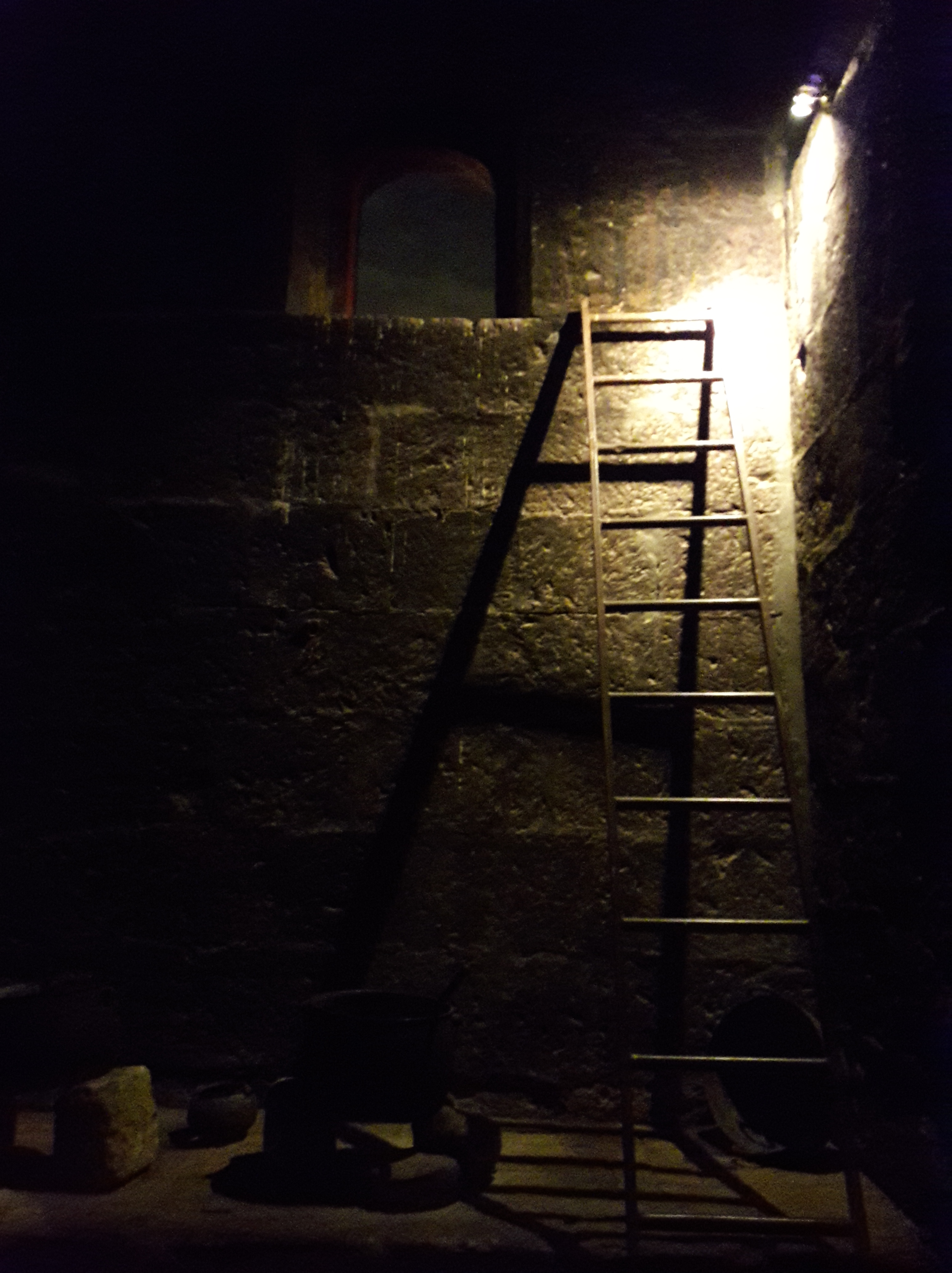 a ladder leaning on the wall