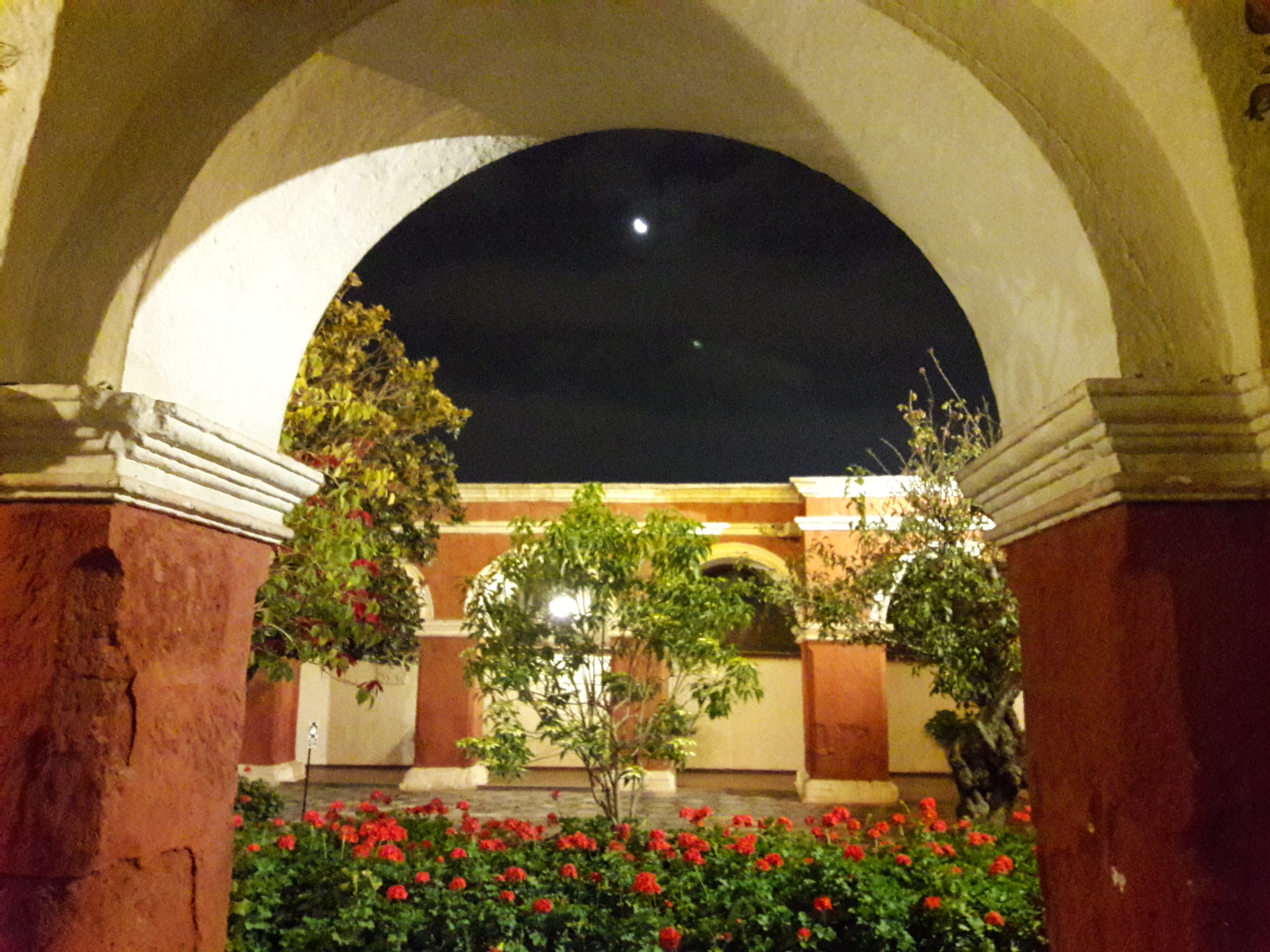 An arch with flowers and plants. The moon and stars in the sky.