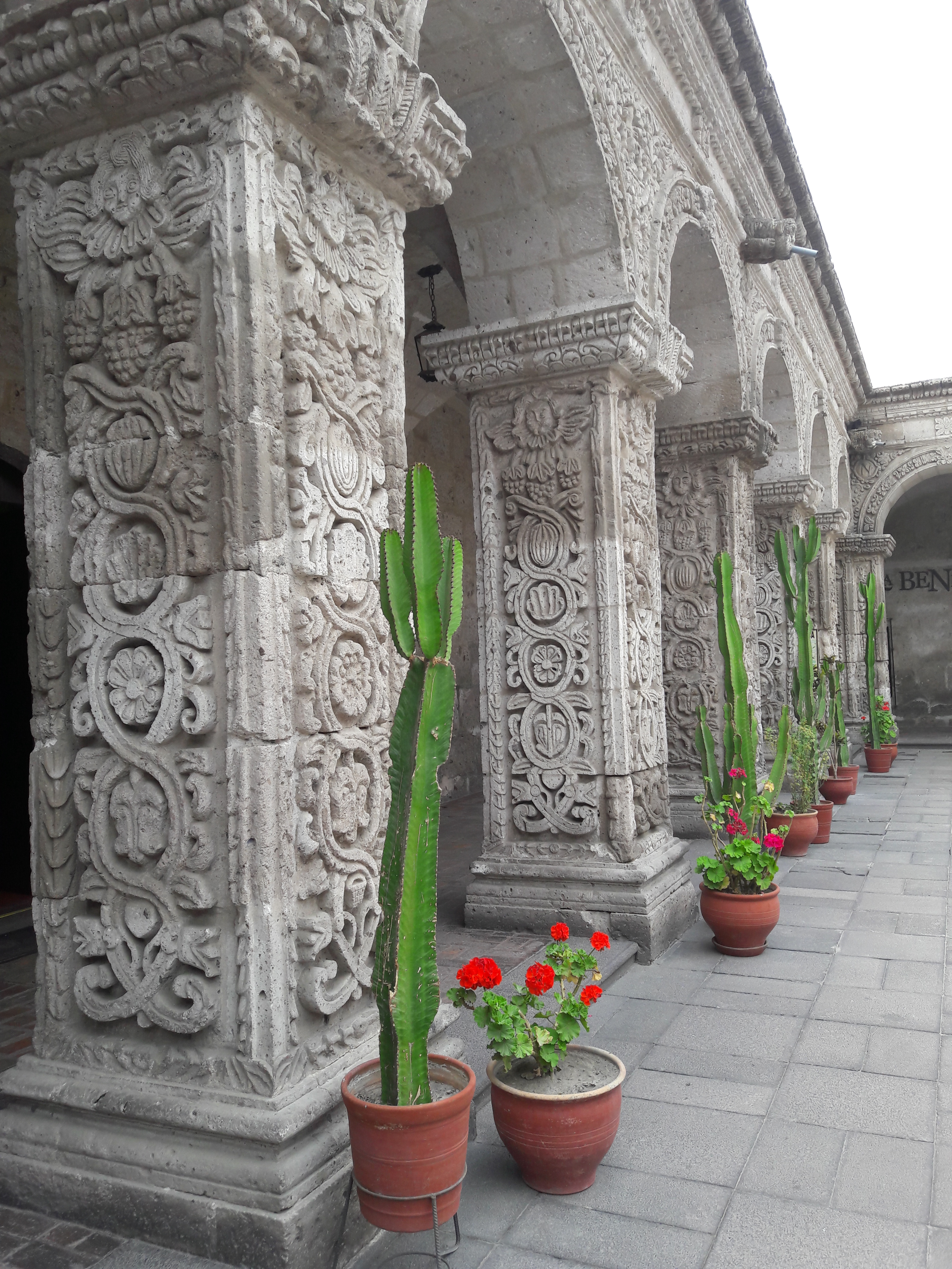 Columns with floral carving decorations. Cactus plants. Red flowers