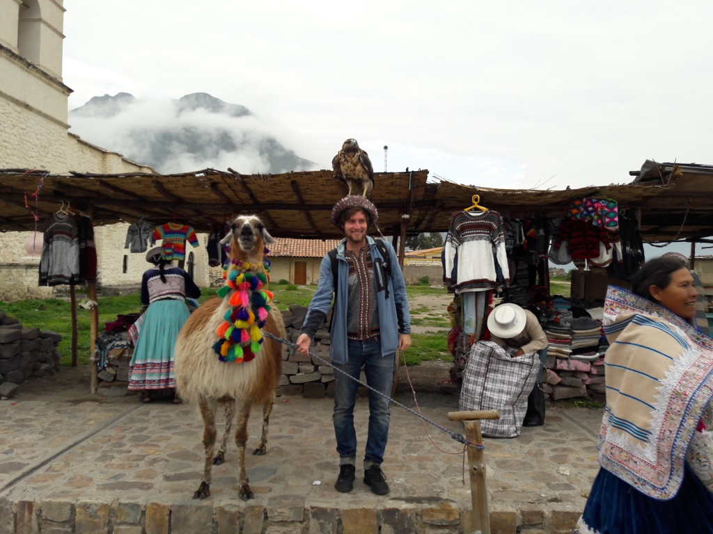 A man standing with a lama and an eagle