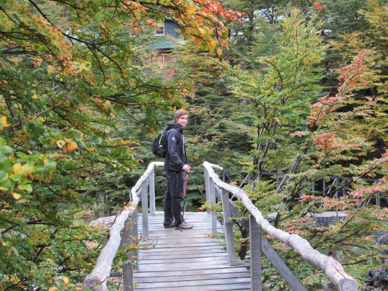 a person standing. Trees. A wooden bridge